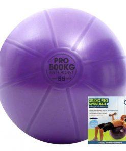 yogabal 55 cm met pomp is direct online te koop bij yoga-pilatesshop